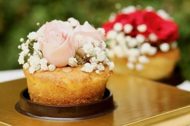cake-2294057_640 (1)